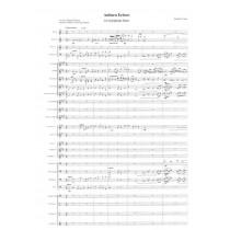Auburn Echoes Symphonic Band