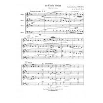 de Coelo Veniet by Jacobus Gallus